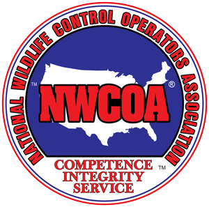 Member Nuisance Wildlife Control Operators Association, serving Bethel, Brookfield, Danbury, Redding, Ridgefield, Newtown, New Milford, Norwalk, Wilton, CT